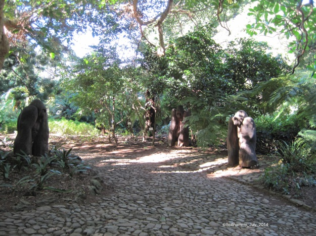 Gorillas in the Shade