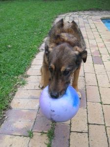Still MY ball