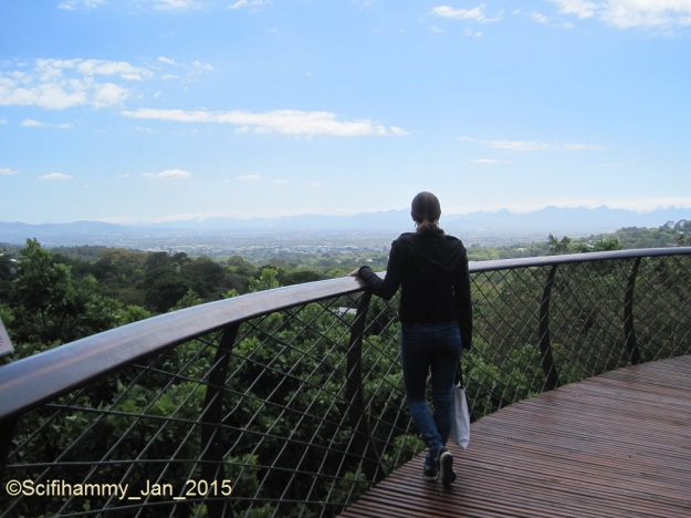 Boomslang 2 - To the Far Horizons