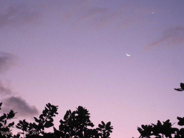Evening Star 2
