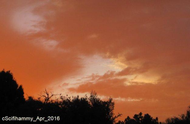 Sunset Rage 1