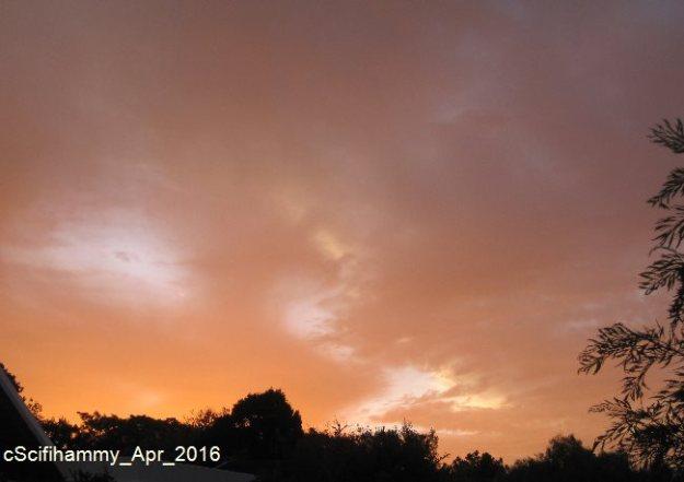 Sunset Rage 2