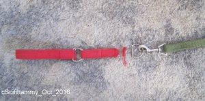 LM Collar 2