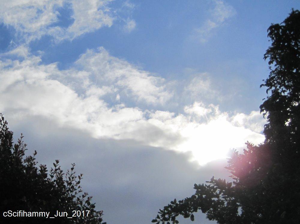winter solstice - photo #25
